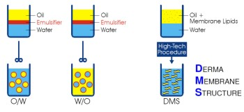 emulsion-DMS-production