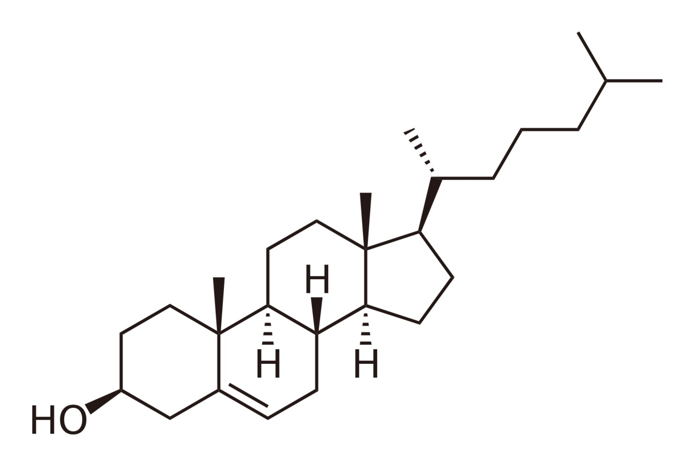 hydrophilic steroid hormones