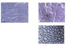 DMS-barrier-emulsion