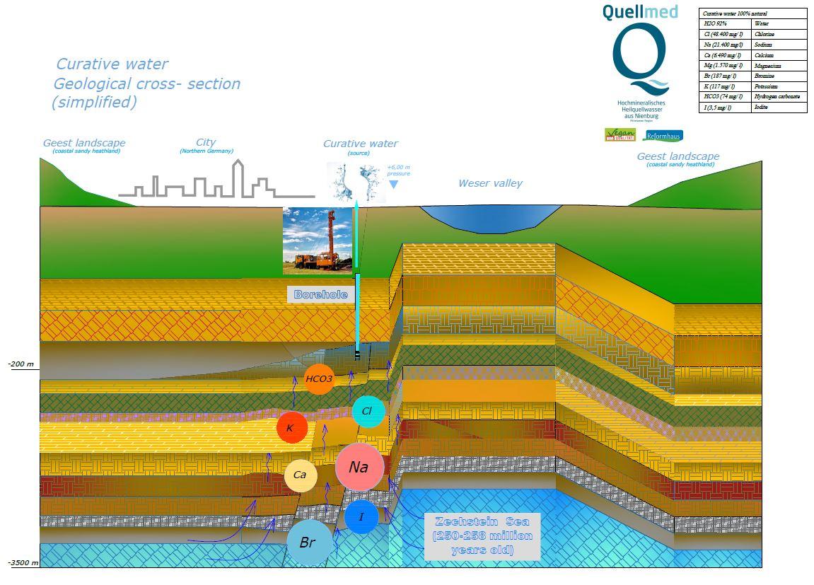 Middle Weser mineral springs (Mittelweser Heilquellen GmbH)